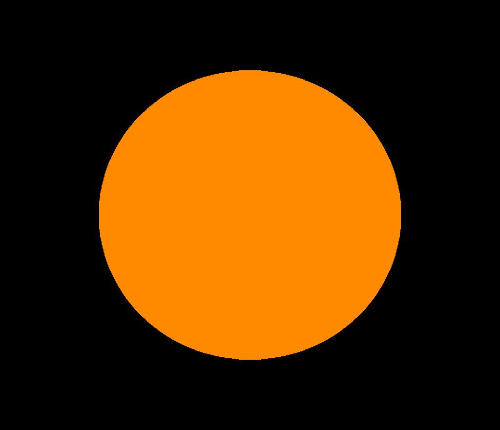 orange circle copy2 1